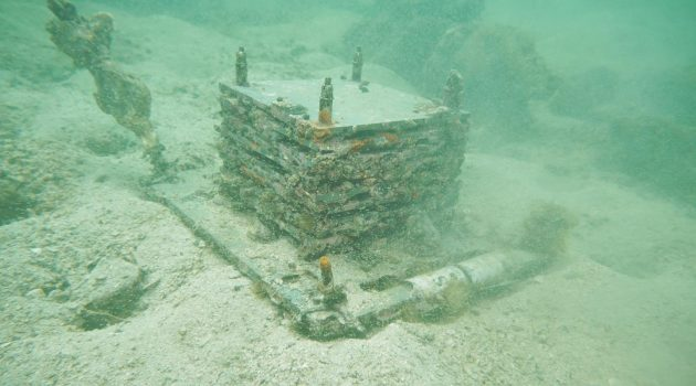This MarineGEO settlement structure was submerged in Tung Ping Chau for two years. Many of these eight-level structures deployed in and around Hong Kong were found to have more than 300 visible organisms living in and on them. (Image courtesy The University of Hong Kong)