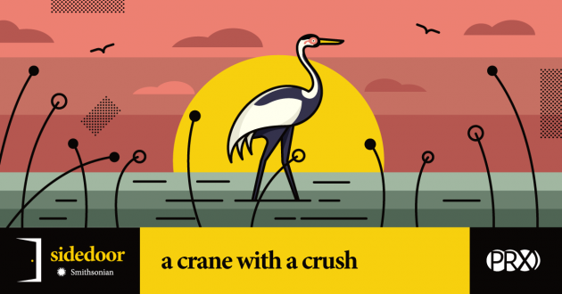 Smithsonian Sidedoor Podcast: a crane with a crush