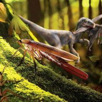 """A female cockroach """"P. yixianensis,"""" center, with a long ootheca, pauses on a tree trunk in an early Cretaceous forest. (artwork by Dr Chen Wang)"""